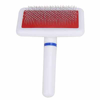 dog white comb
