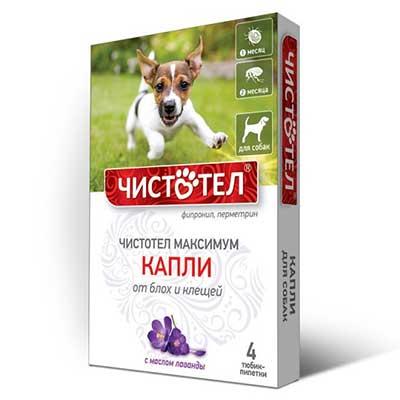 ჩისტოტელი ძაღლის წვეთები